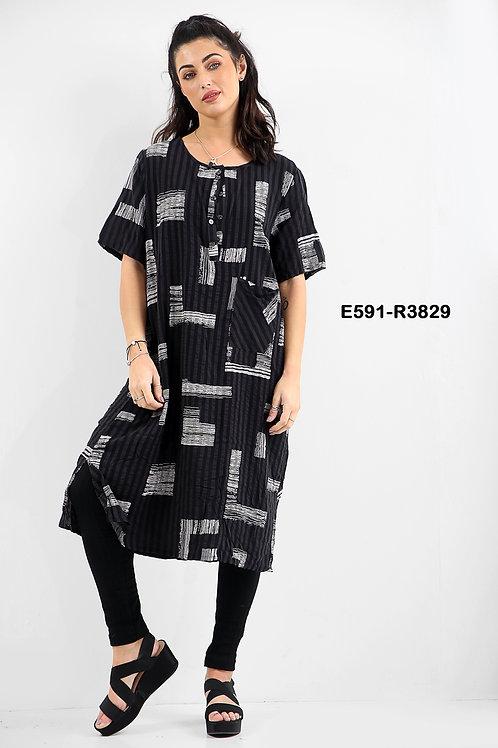 E591-R3829