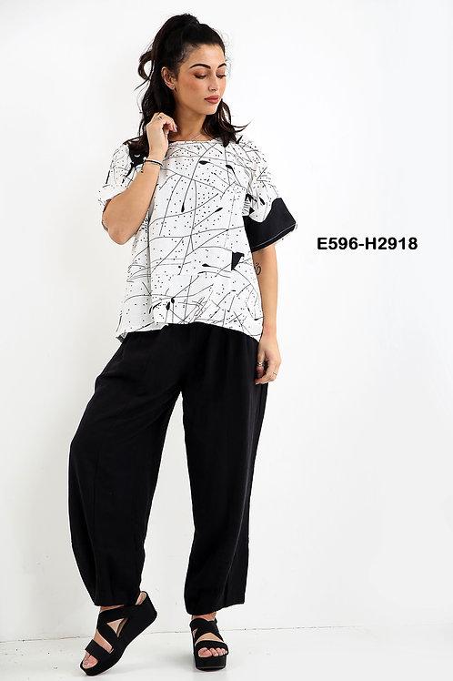 E596-H2918
