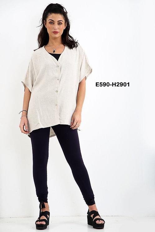 E590-H2901