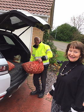 Delivery of daff bulbs.JPG