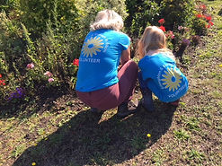 In Bloom Digging.JPG