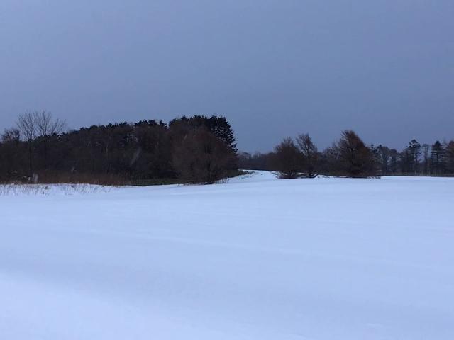 雪の降る音も聞こえない