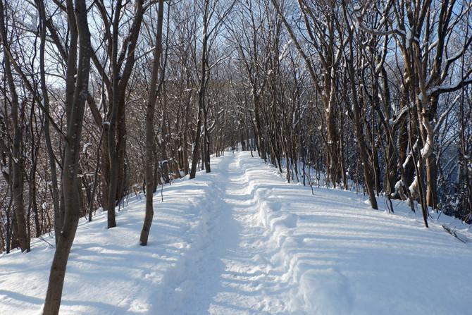 冬の三角山
