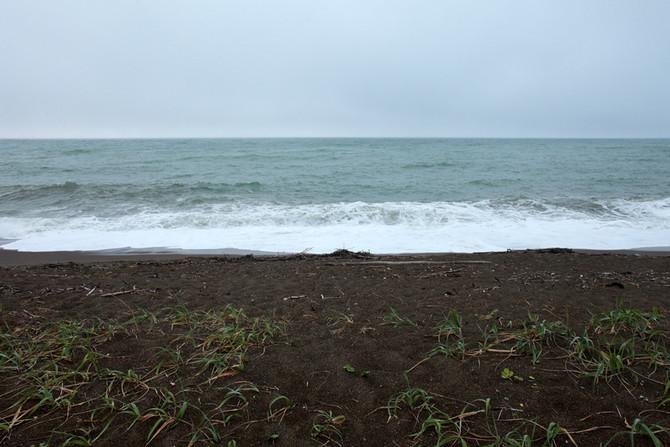 近づけない海