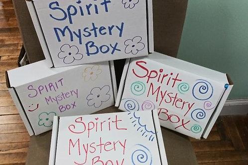 Spirit Mailed Mystery Box