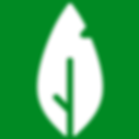 RC Logo Leaf Green.png