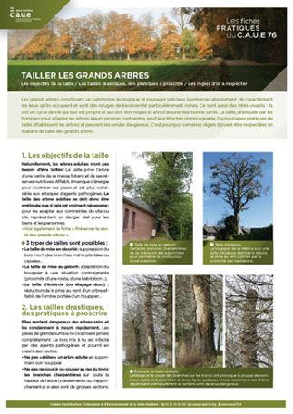 2_FICHE-TAILLE-des-arbresv5.jpg