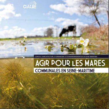 Agir pour les mares communales en Seine-Maritime