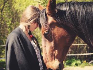Vieraskynä: Hevosen ja ihmisen välinen eheyttävä vuorovaikutus