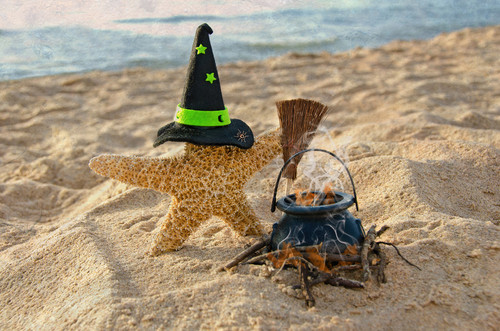 orange-starfish-wearing-black-witches-hat-with-green-stars-on-the-beach