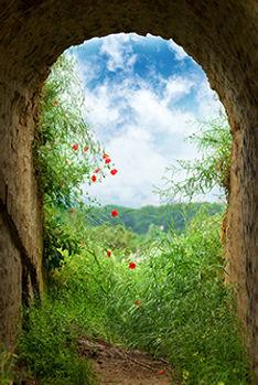 Gypsy Tunnel 2.jpg