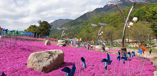 봄꽃향연장에서 즐기는 아이들.jpg