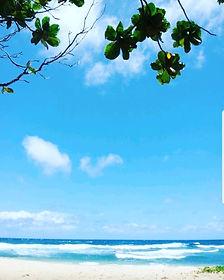 하와이2.jpg