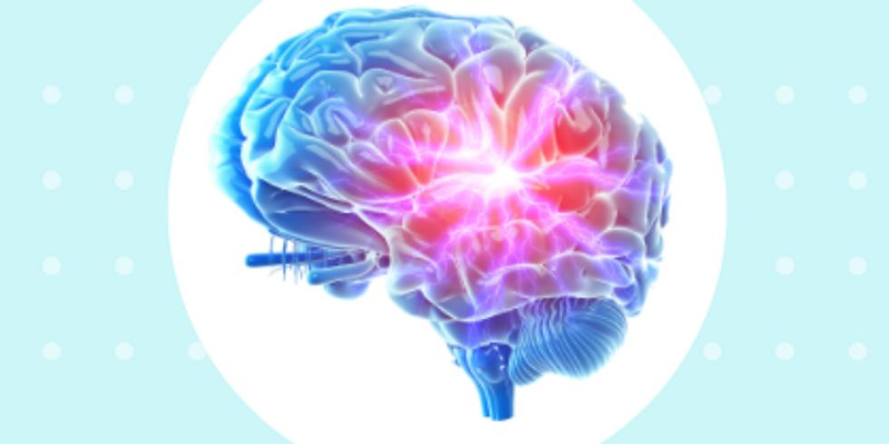 Attention, fonctions exécutives, mémoire, métacognition et jeux