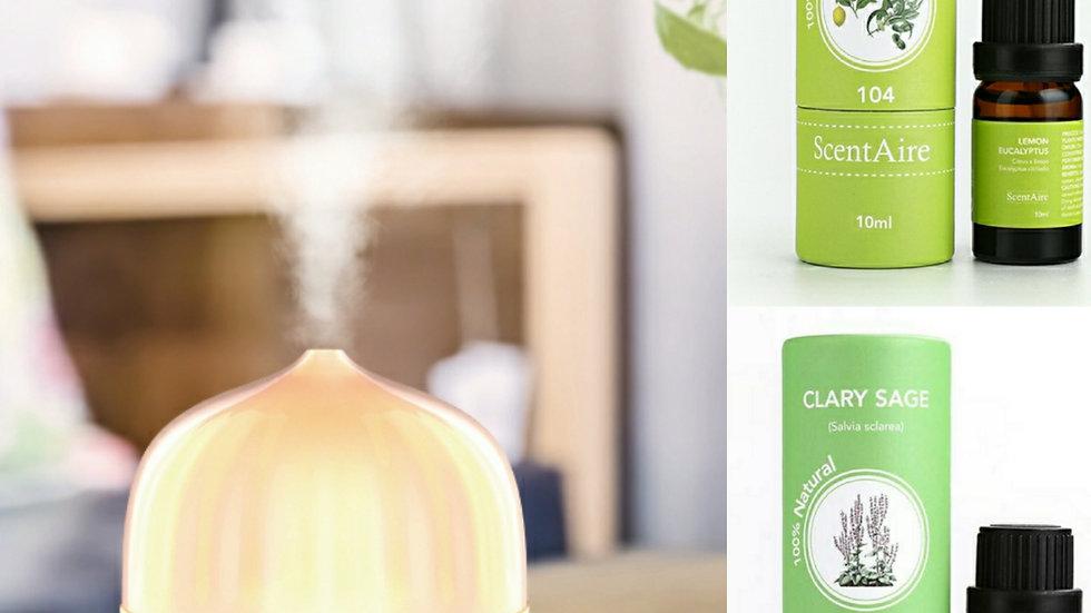 OctFest - Polar Aroma Diffuser Bundle