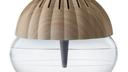 Air Purifier - Seashell