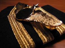 commercial pilots license