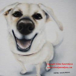 painting commission of a pet dog