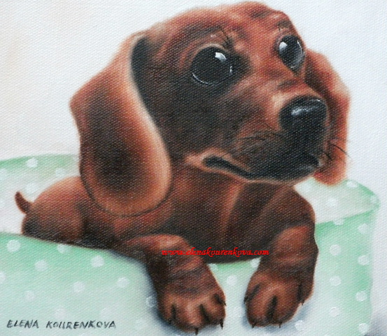 pet paintings -dogs-dashhound