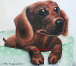 pet paintings -dogs-dashhound