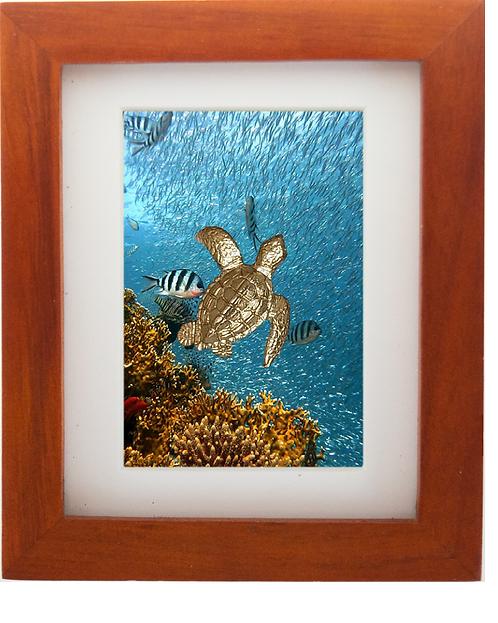 Bronze Sea Turtle Sculpture Shadow Box