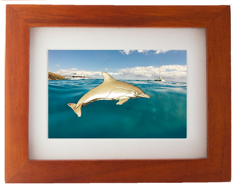 Bronze Dolphin Sculpture Shadow Box