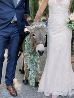 BRIDE AND GROOM-0075.jpg