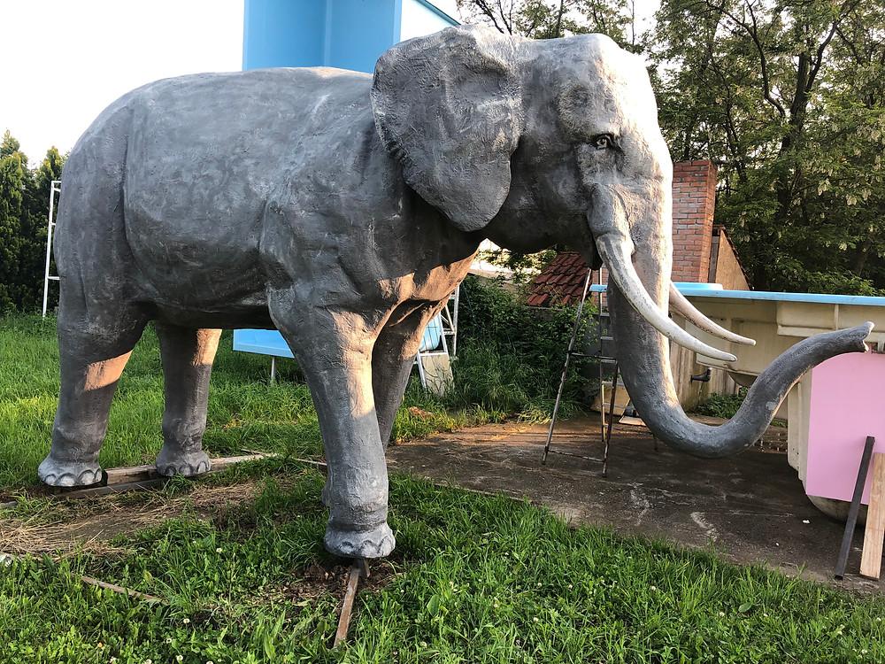 slon ali fatamorgana?