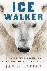 Ice-Walker-Cover-600-197x300.jpg