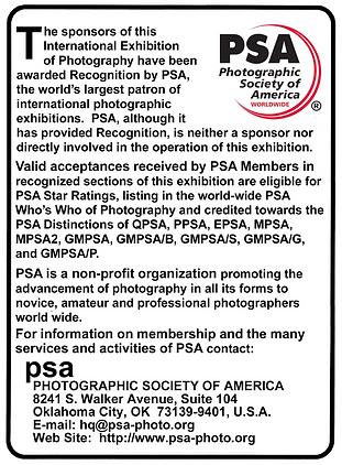 PSA text.png