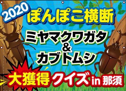 No.7 夏休み企画1『2020 那須 ぽんぽこ横断ミヤマクワガタ!大獲得クイズ!!』