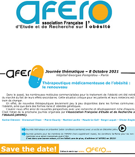 Afero Journee thematique oct 2021.png