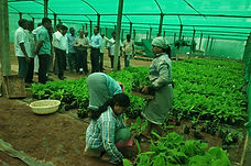 RYTHUKOSAM-Farmers%20Exposure%20to%20Sha