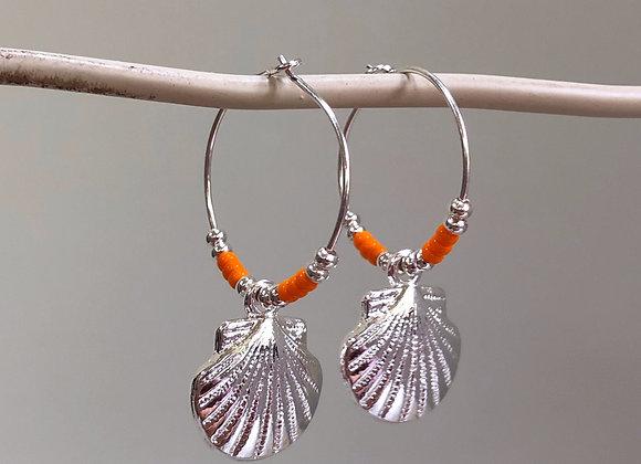 Orange Scallop Shells