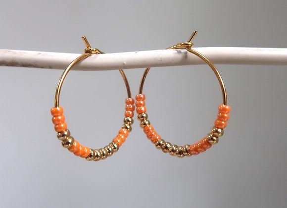 Gold & Apricot