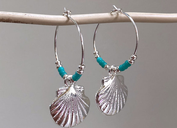 Turquoise Scallop Shells