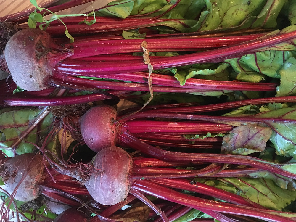 Fresh beetroot and leaves