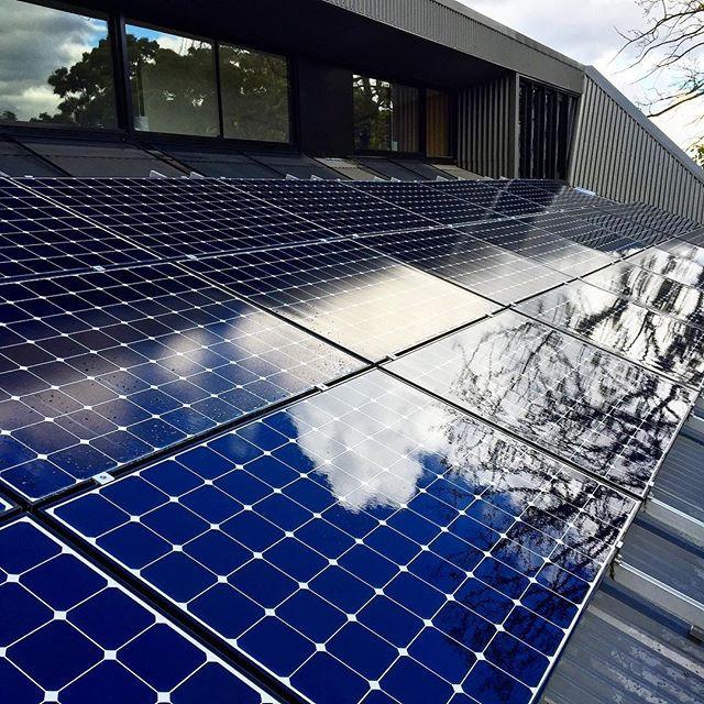 Solar panels looking 👌.jpg
