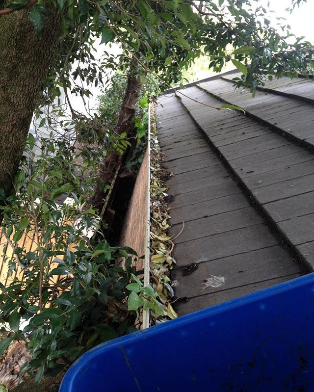 Gutter Cleaning 🍂🍂🍂_We've got to clea