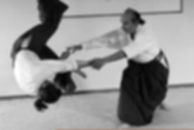 Article Aikimag Juin 2012.JPG