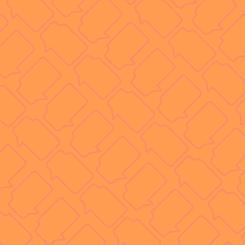 Fondo naranja-09.png
