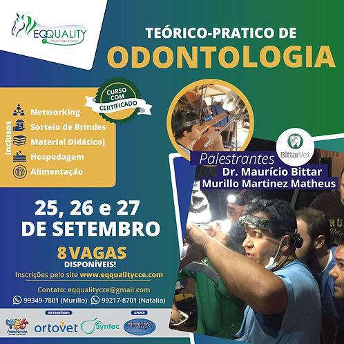 Teórico-Prático de Odontologia