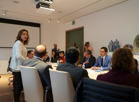 V Reunión de la Región Europa de la RGMx (Madrid)