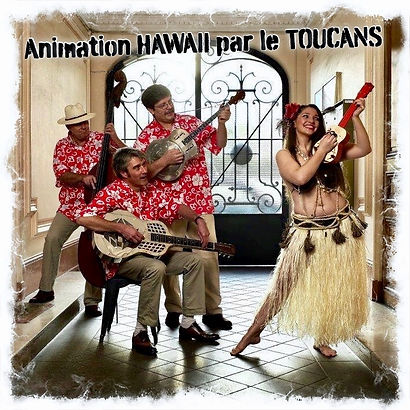 Animation musicale thème Hawaï