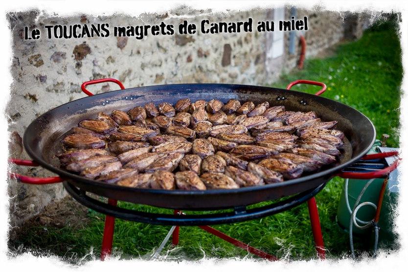 Magrets de canard