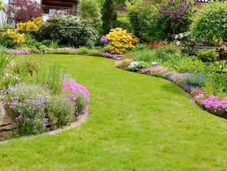 Prepare your spring garden