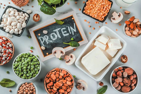 Plant based protein.jpg