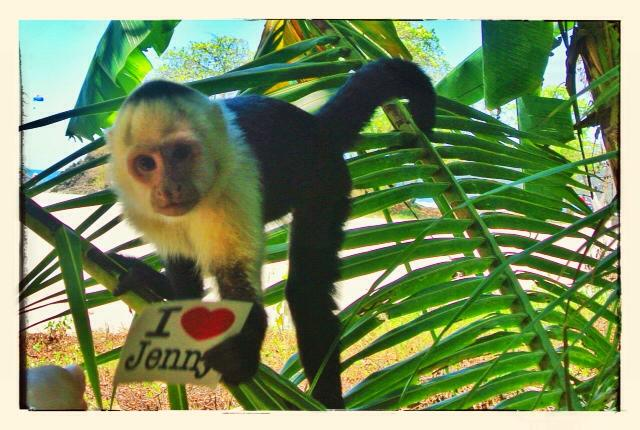 JS monkey