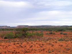 Outback - Territoire du Nord