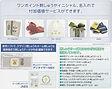 ジャノメ 刺繍ミシン NS-1
